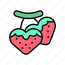 diet, healthy, strawberries, strawberry, vegan, veggie icon