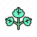 diet, healthy, leaf, nature, plant, vegan, veggie icon