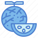 diet, melon, organic, vegetables icon
