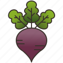 beetroot, detox, healthy, purple, vegetable icon