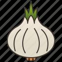 condiment, garlic, ingredient, spice, white icon