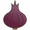 condiment, onion, red, scented, shallot icon