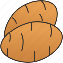brown, carbohydrate, energy, potato, tubers icon