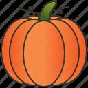 fruit, halloween, harvest, orange, pumpkin