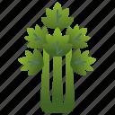 celery, dietary, green, healthy, stalk icon