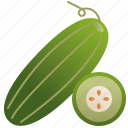 cucumber, dietary, green, healthy, salad icon