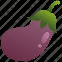 antioxidant, aubergine, eggplant, fruit, purple