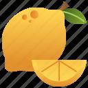 citrus, lemon, seasoning, sour, yellow icon