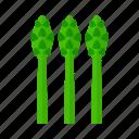 asparagus, food, fresh, healthy, organic, vegetable, vegetarian