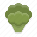 broccoli, cooking, food, healthy, kitchen, restaurant, vegetable icon