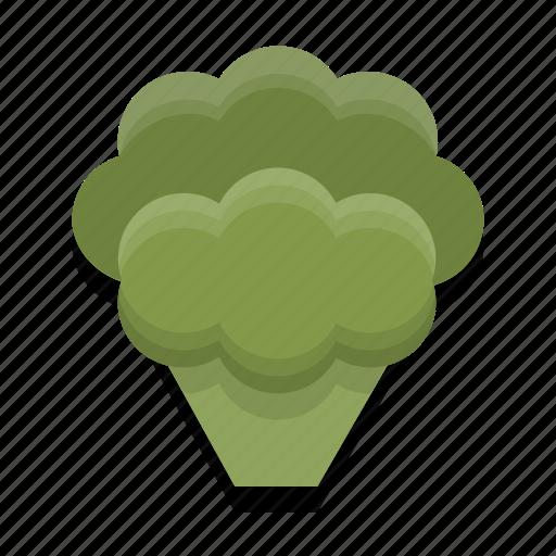 broccoli, food, healthy, vegetable icon