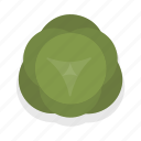 cabbage, cooking, food, gastronomy, healthy, kitchen, vegetable icon