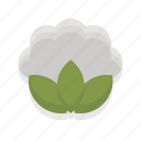 cauliflower, cooking, food, healthy, kitchen, restaurant, vegetable icon
