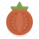 cooking, food, healthy, kitchen, restaurant, tomato, vegetable icon
