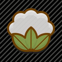 cauliflower, cooking, food, healthy, kitchen, restaurant, vegetable icon