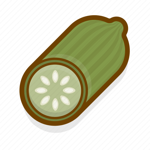 cooking, cucumber, food, healthy, kitchen, restaurant, vegetable icon