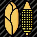corn, diet, food, healthy, organic, vegan, vegetarian icon