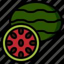 diet, food, fruit, healthy, organic, restaurant, watermelon icon