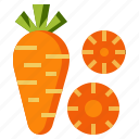 carrot, diet, food, healthy, organic, vegetable, vegetarian icon