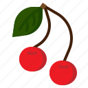 cherries, cherry, diet, food, fruit, healthy, organic icon