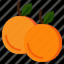 diet, food, fruit, healthy, orange, organic, vegetarian icon