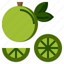 diet, food, fruit, healthy, lemon, organic, restaurant icon
