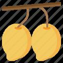 diet, food, fruit, healthy, mango, organic, restaurant icon