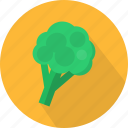 agriculture, broccoli, fresh, organic, plant, vegetables icon