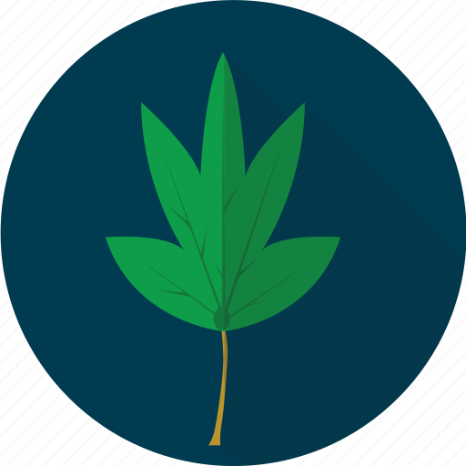 agriculture, cassava, leaf, leaves, plant, tropical, vegetables icon