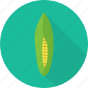 corn, food, harvest, maize, organic, vegetables icon