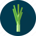 leek, nature, onion, organic, plant, vegetables icon