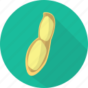 food, nature, nut, organic, peanut, seed, vegetables icon