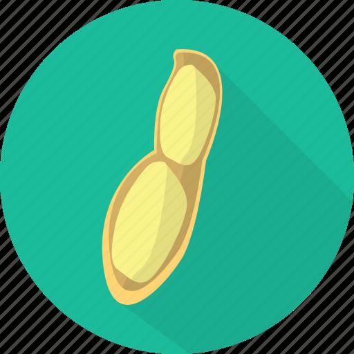 food, nature, nut, organic, peanut, seed, vegetables icon