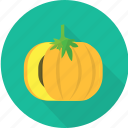 garden, gourd, harvest, nature, plant, pumpkin, vegetables icon