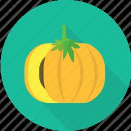 garden, gourd, harvest, nature, plant, pumpkin, vegetables icon