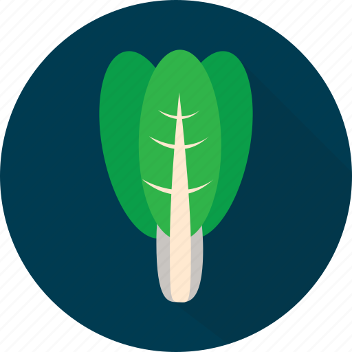 food, fresh, green, healthy, organic, spinach, vegetables icon
