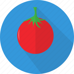 agriculture, food, healthy, organic, plant, tomato, vegetables icon
