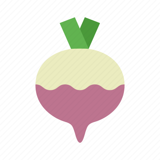 colour, food, garden, purple, root, turnip, vegetable icon