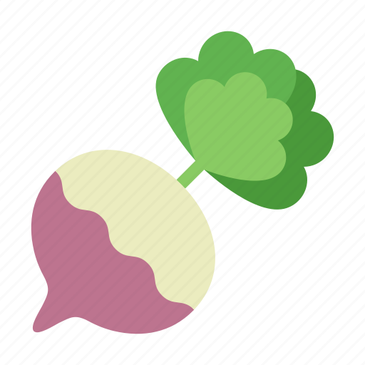 colour, food, garden, leaf, root, turnip, vegetable icon