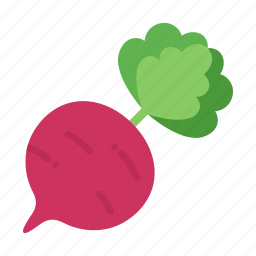 beet, beetroot, colour, food, garden, red, vegetable icon