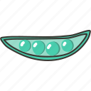 food, fresh, pea, plant, veggie icon