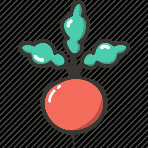 Fresh, reddish, veggie, food, plant icon - Download on Iconfinder