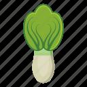 aubergine, bell, broccoli, carrot, pepper, vegetable, vegetables