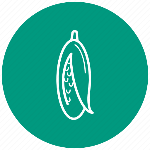 corn, food, ingredient, vegetables icon