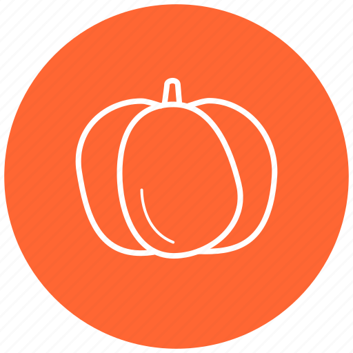 food, ingredient, pumpkin, vegetables icon