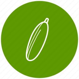 cucumber, food, ingredient, vegetables icon