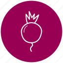 beets, food, ingredient, radishes, vegetables icon