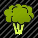 broccoli, cook, healthy, kitchen, salad, tree, vegetable