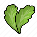 food, fruit, lettuce, vegetables icon