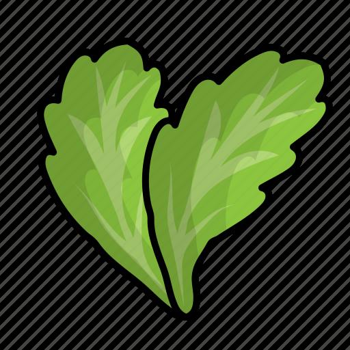 food, fruit, lettuce, vegetables icon
